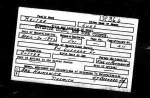 Lues Reiter - US Naturalization Record